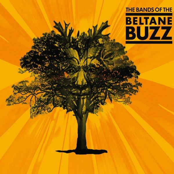 Bands from the Beltane Buzz, 2014
